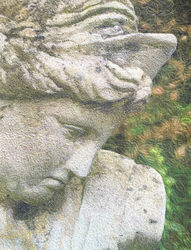 Beautiful Faces, var. 6, Garden Goddess